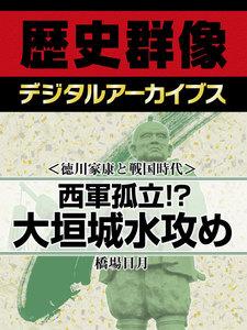 <徳川家康と戦国時代>西軍孤立!? 大垣城水攻め