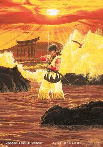 NEOGEO: A VISUAL HISTORY ネオジオ~目で楽しむ軌跡~ JAPANESE EDITION
