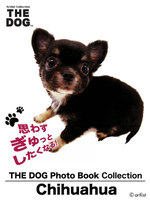 THE DOG Photo Book Collection Chihuahua