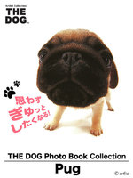 THE DOG Photo Book Collection Pug