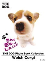 THE DOG Photo Book Collection Welsh Corgi